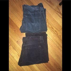 LOFT corduroy modern boot pants SZ 8 NWT QTY 2